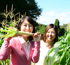「朝さんぽ」早朝の菜園